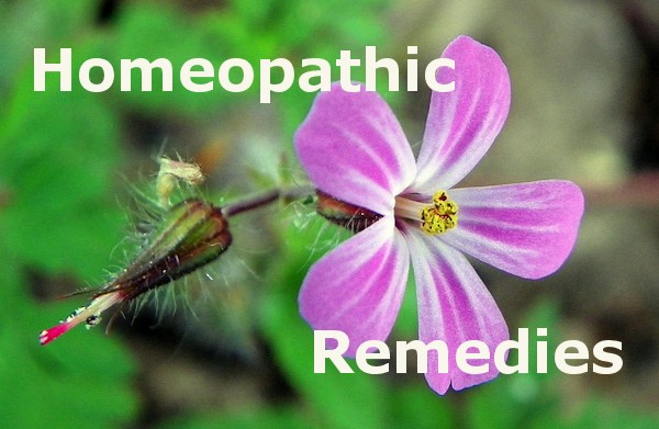 homeopathic-remedies_orig