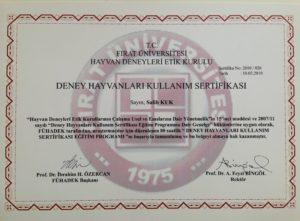 deney-hayvanlari-kullanim-sertifikasi
