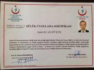 Sülük sertifikası